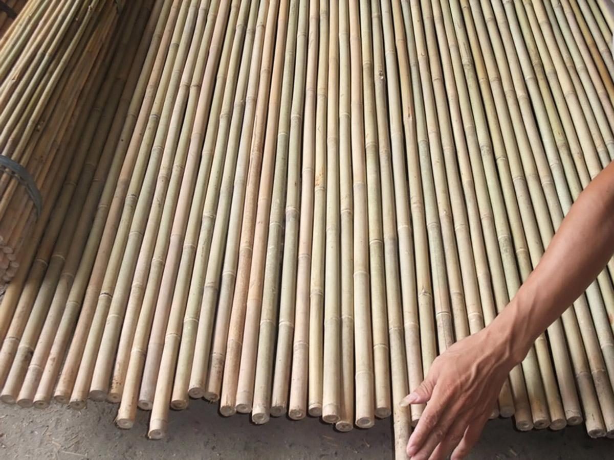 Rosa pietro e figli bambu curiosit e prodotti in bamboo for Canne di bambu per pergolati