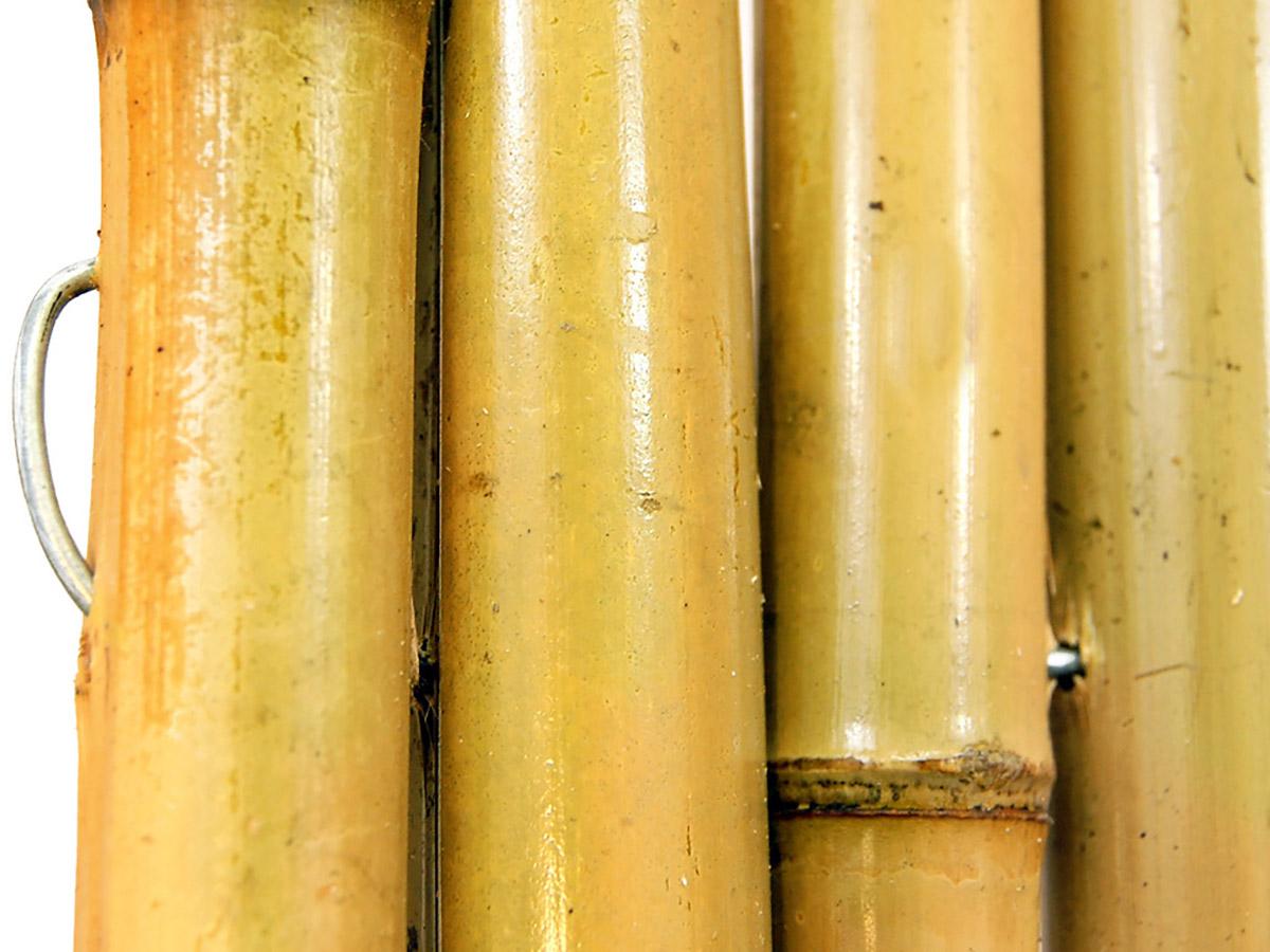 Rosa Pietro e Figli - Bambu: curiosità e prodotti in Bamboo