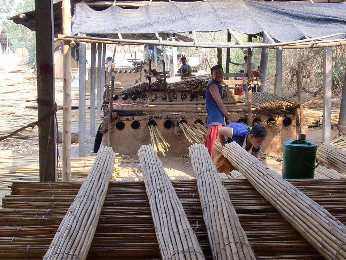 Rosa pietro e figli vendita prodotti bambu bamboo for Vendita bambu
